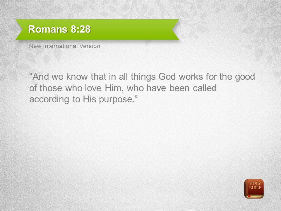 Romans 8:28 New International Version.