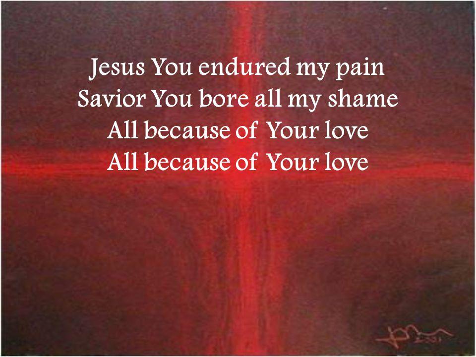 Jesus You endured my pain