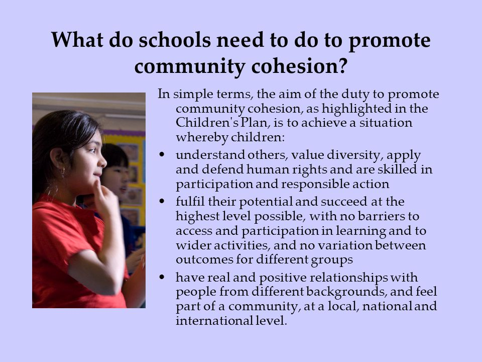 What do schools need to do to promote community cohesion