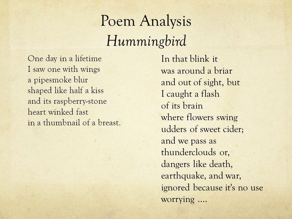 Poem Analysis Hummingbird