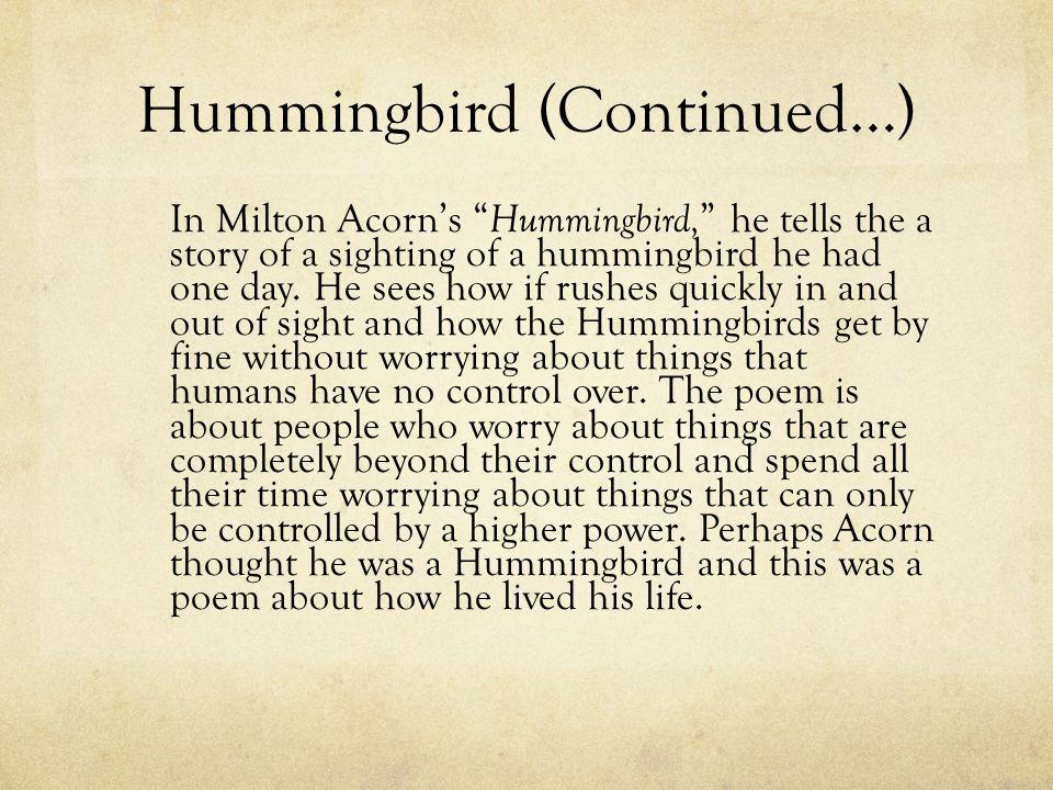 Hummingbird (Continued…)