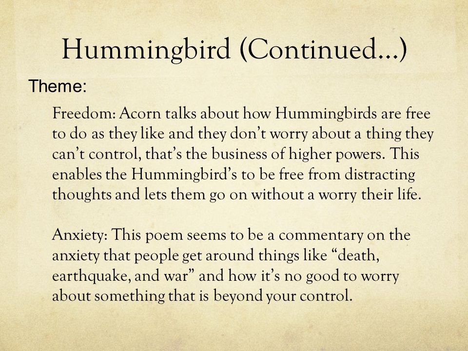Hummingbird (Continued...)