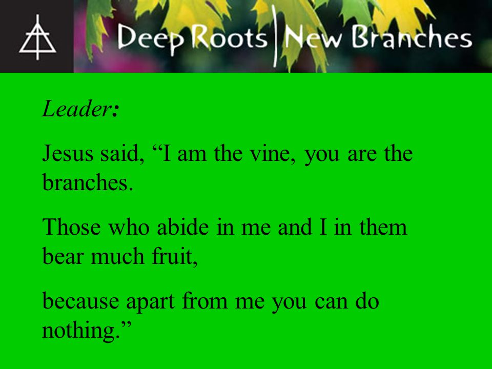 Leader: Jesus said, I am the vine, you are the branches. Those who abide in me and I in them bear much fruit,