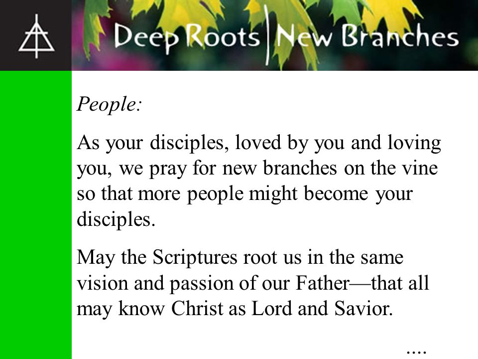People: As your disciples, loved by you and loving you, we pray for new branches on the vine so that more people might become your disciples.