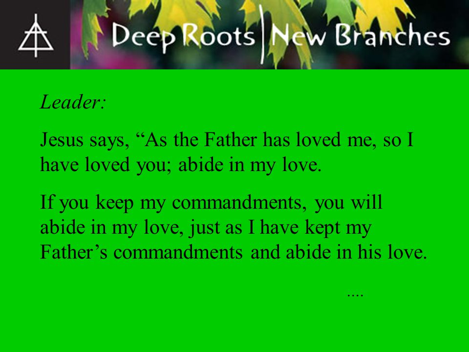 Leader: Jesus says, As the Father has loved me, so I have loved you; abide in my love.