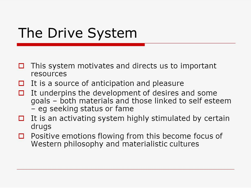 The Drive System This system motivates and directs us to important resources. It is a source of anticipation and pleasure.