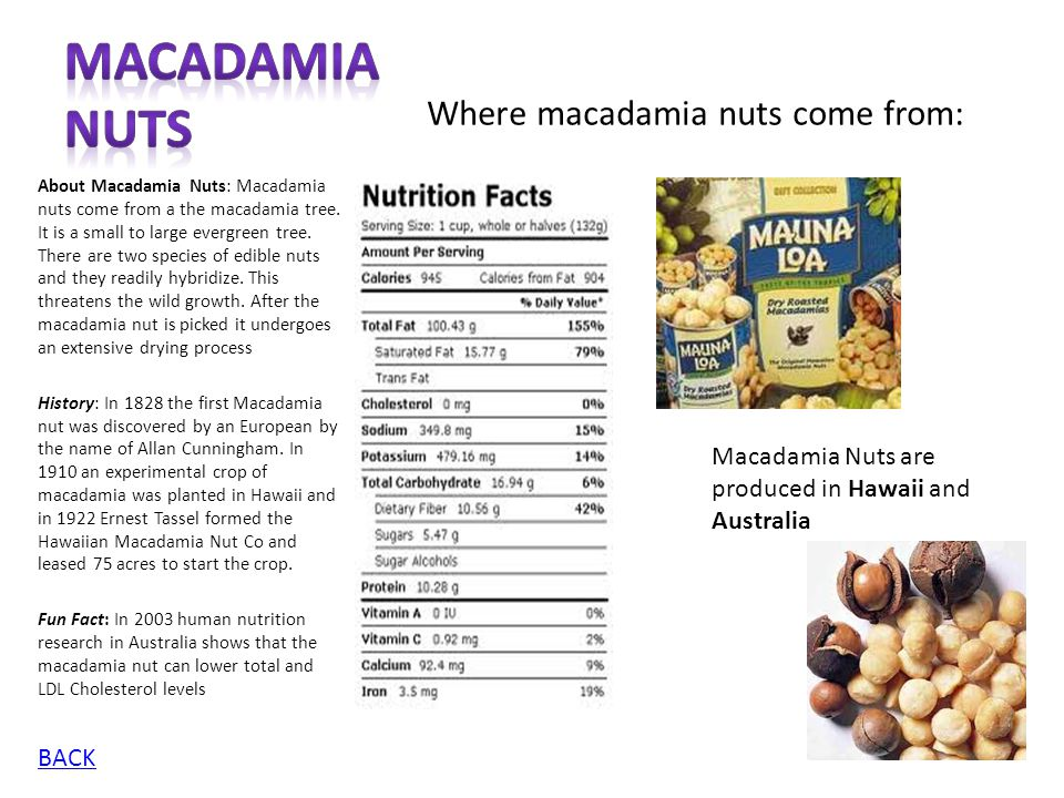 Macadamia Nuts Where macadamia nuts come from:
