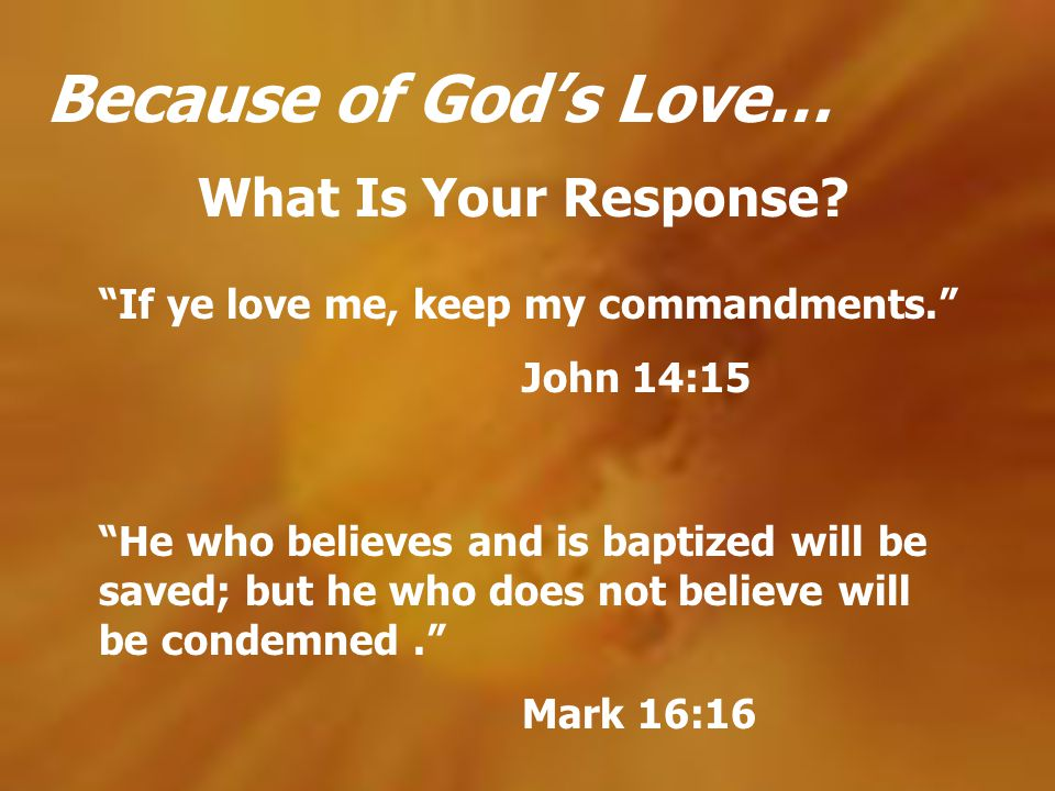 Because of God's Love… What Is Your Response
