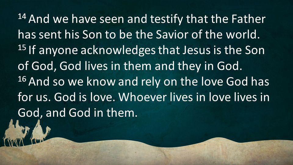 14 And we have seen and testify that the Father has sent his Son to be the Savior of the world.