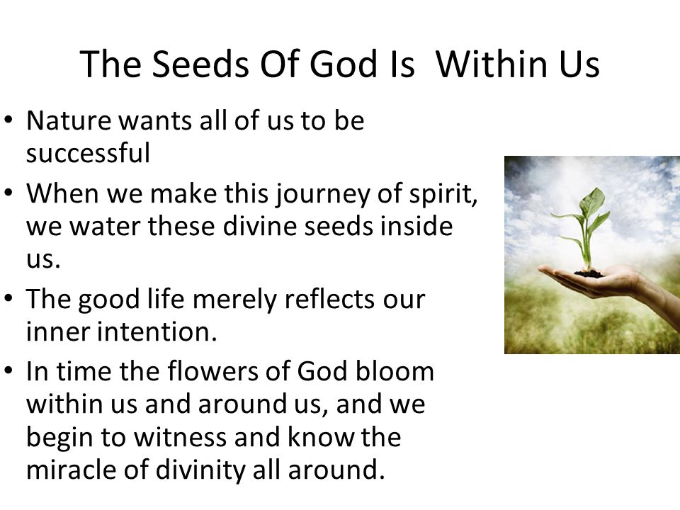 The Seeds Of God Is Within Us