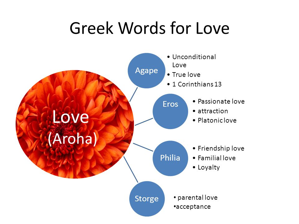 Love Greek Words for Love (Aroha) Agape Eros Philia Storge