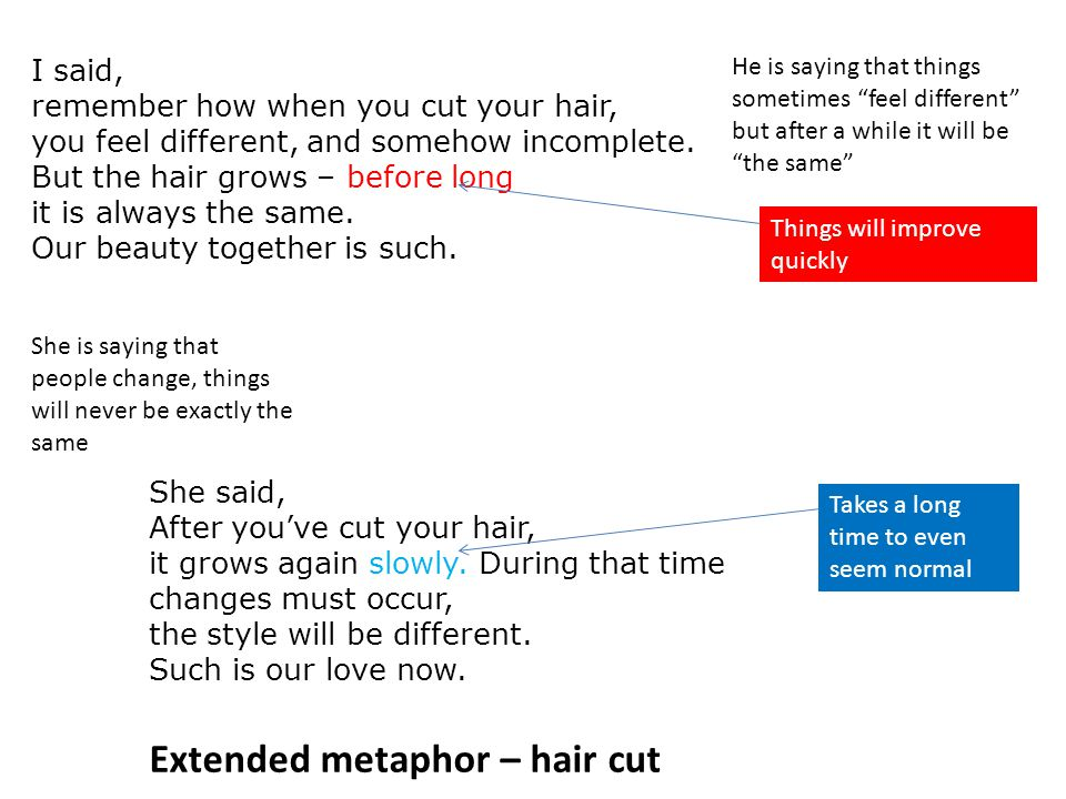 Extended metaphor – hair cut