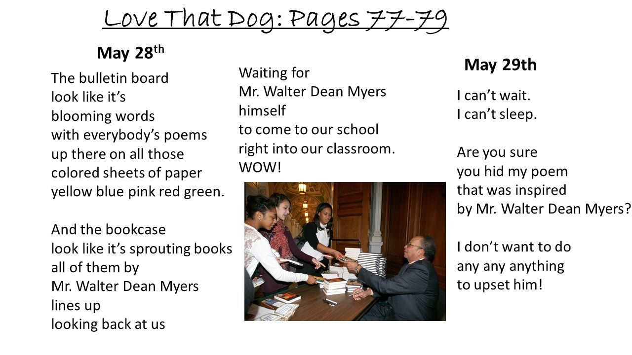 Love That Dog: Pages May 28th May 29th