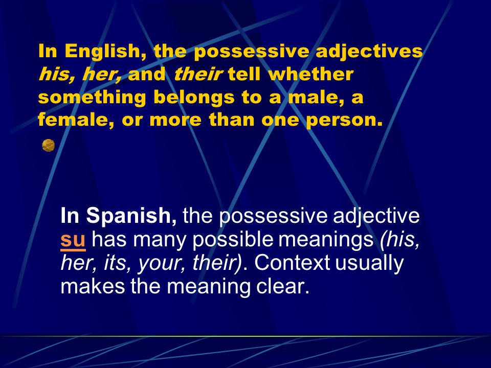 In English, the possessive adjectives his, her, and their tell whether something belongs to a male, a female, or more than one person.