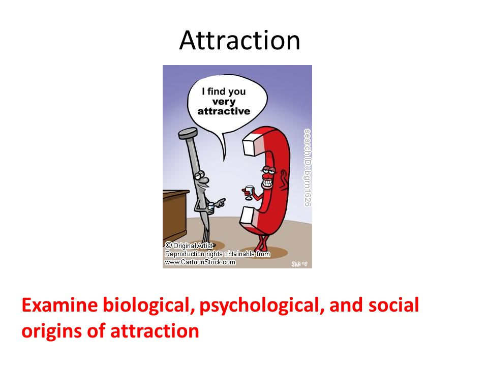 Examine biological, psychological, and social origins of attraction