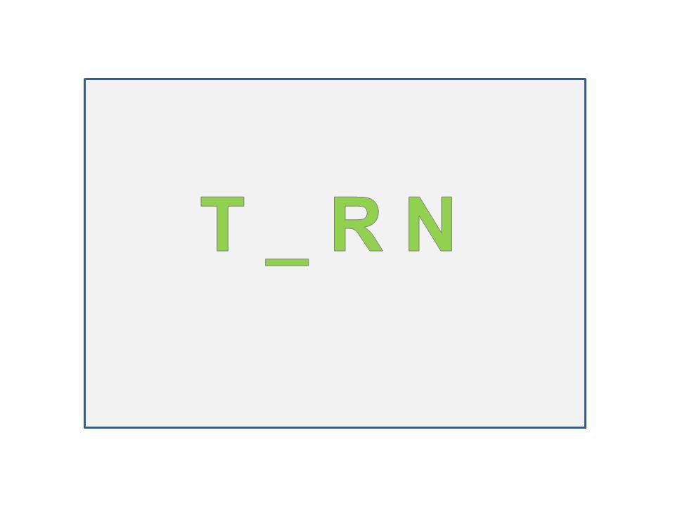 T _ R N