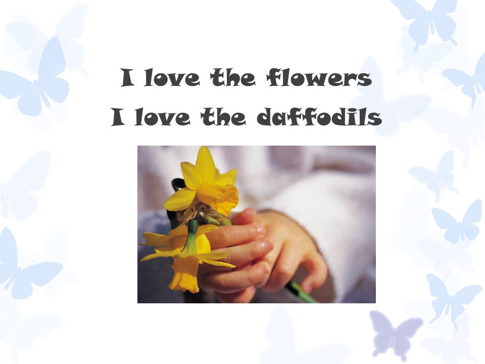 I love the flowers I love the daffodils