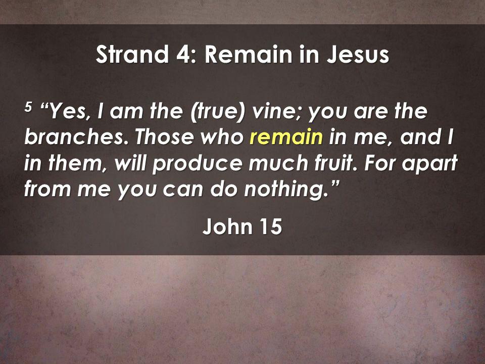 Strand 4: Remain in Jesus