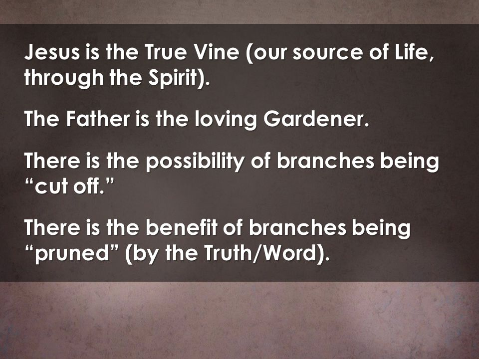 Jesus is the True Vine (our source of Life, through the Spirit).