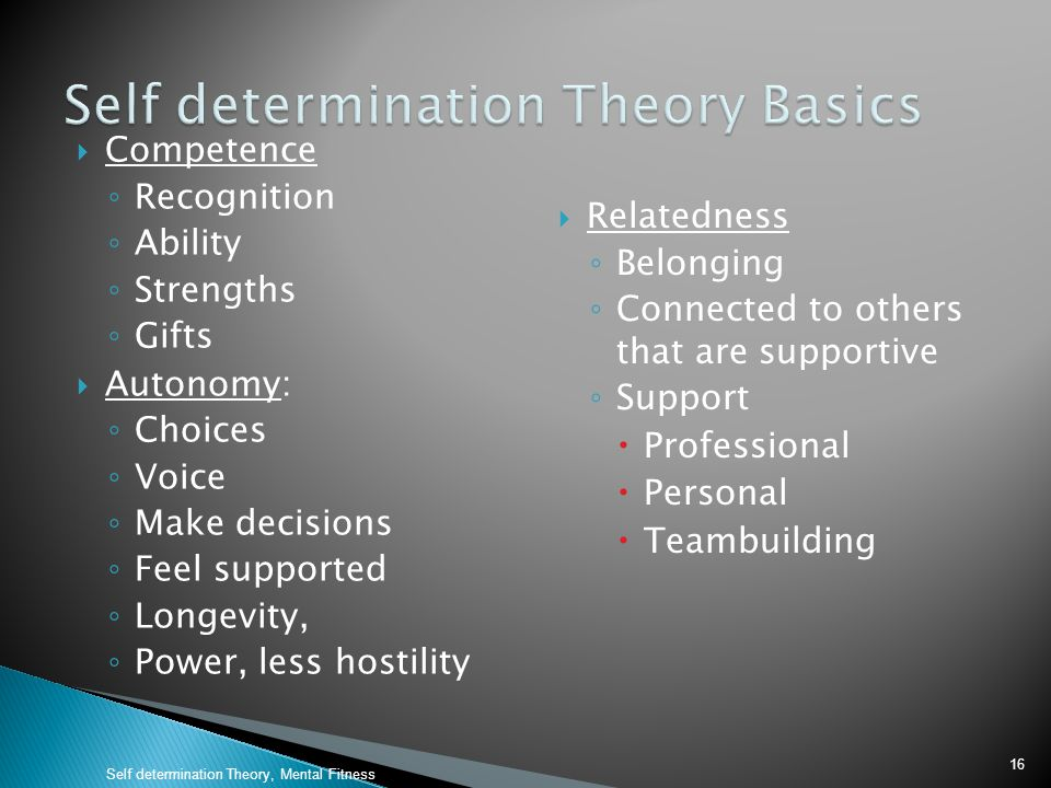 Self determination Theory Basics