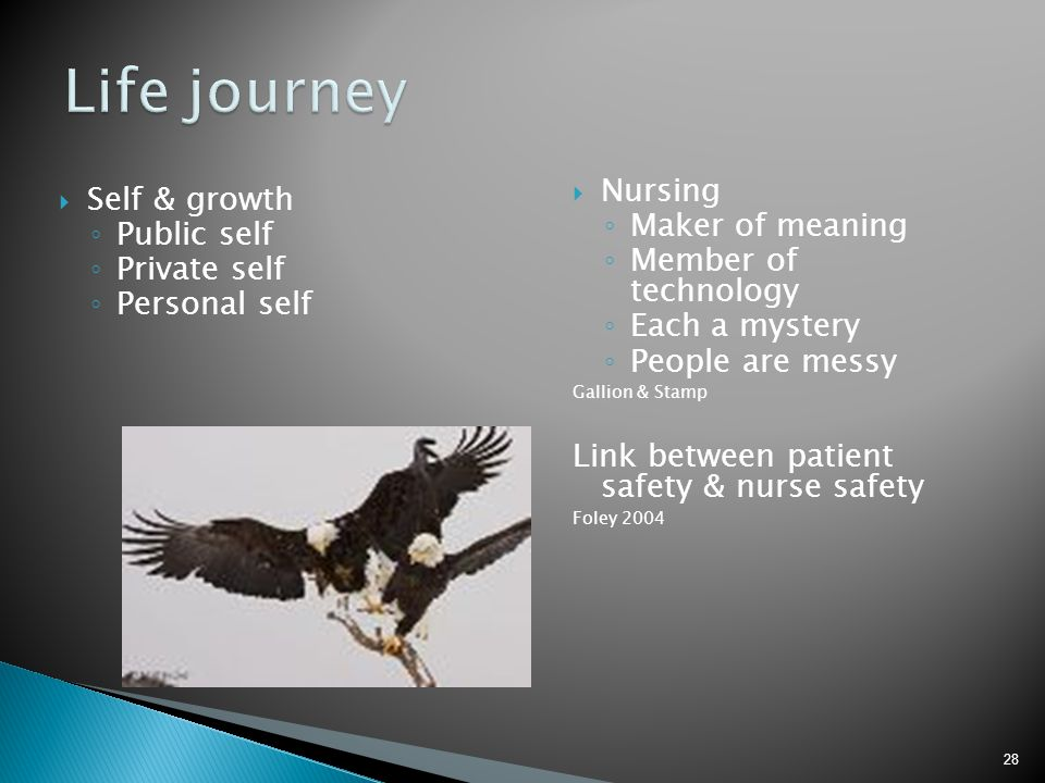 Life journey Nursing Self & growth Maker of meaning Public self
