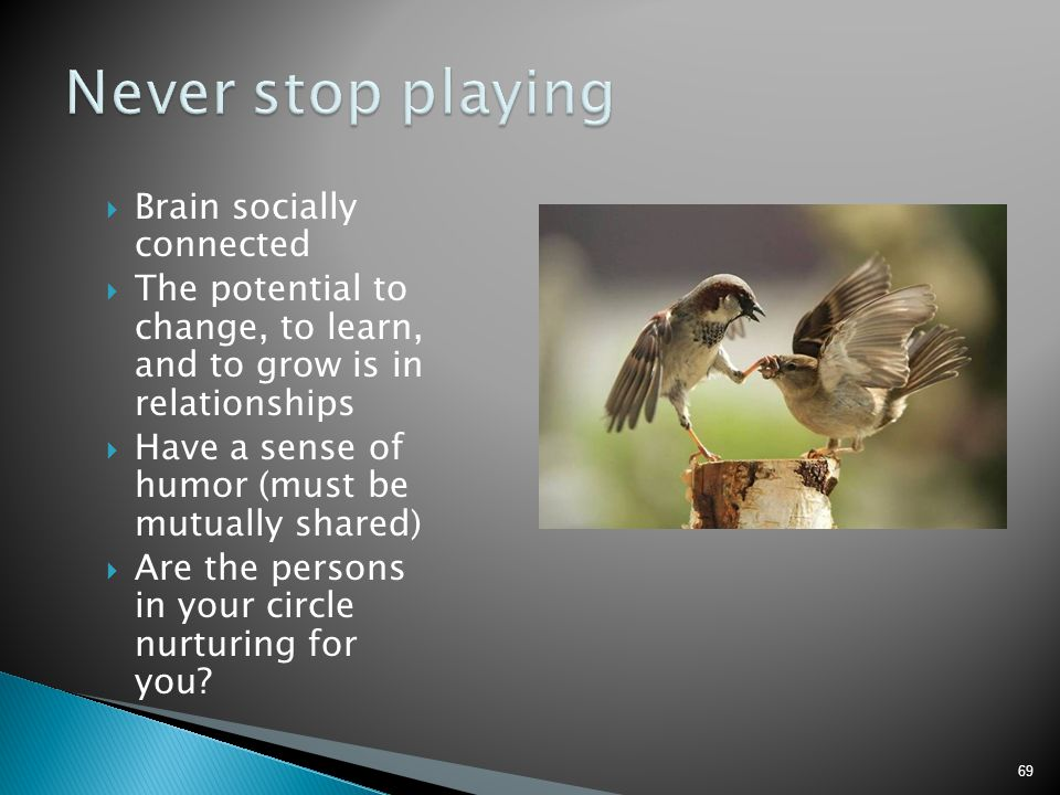 Never stop playing Brain socially connected
