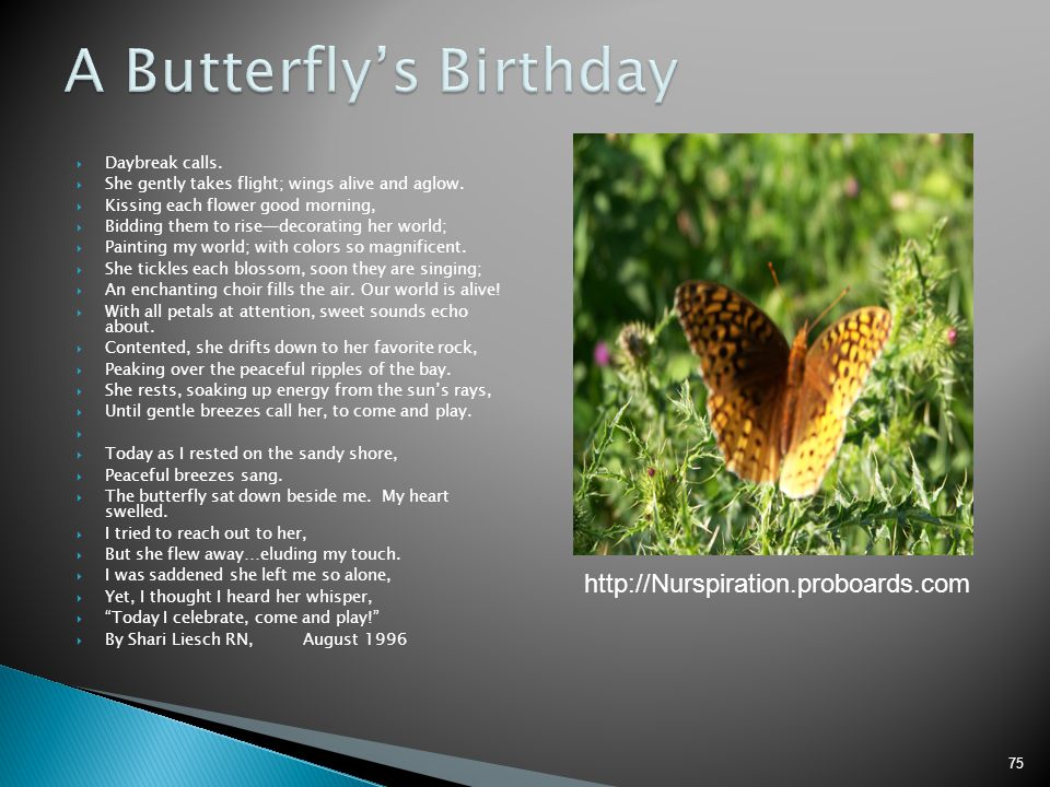 A Butterfly's Birthday