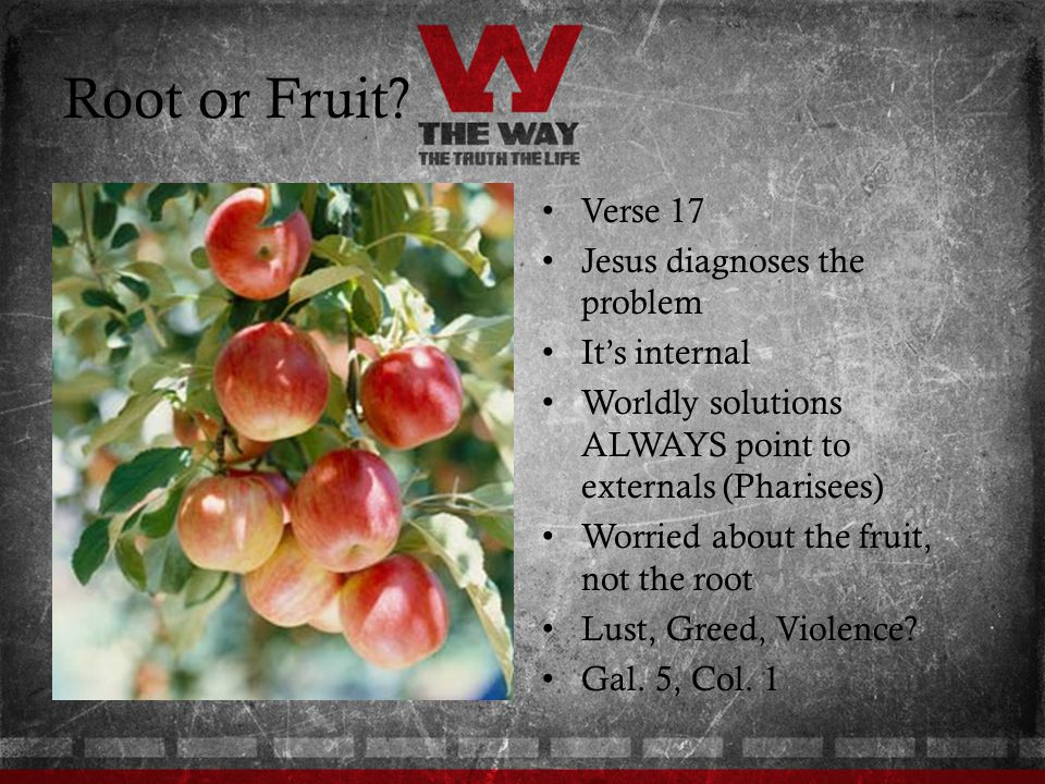 Root or Fruit Verse 17 Jesus diagnoses the problem It's internal
