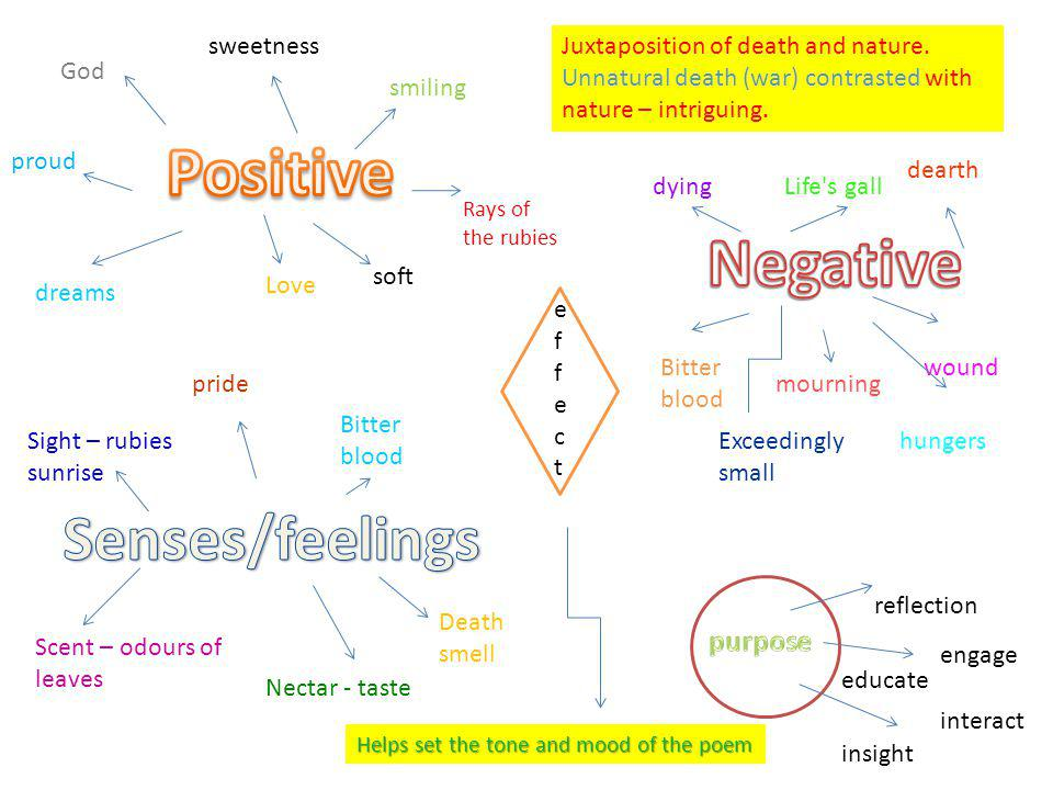 Positive Negative Senses/feelings purpose sweetness