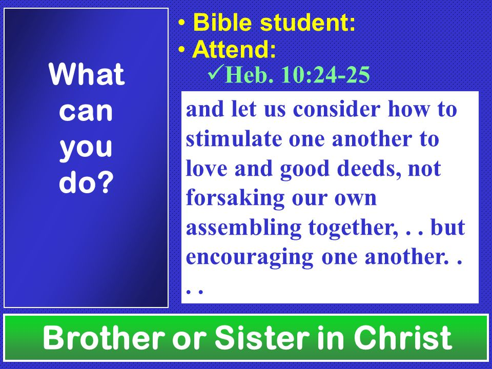 Brother or Sister in Christ