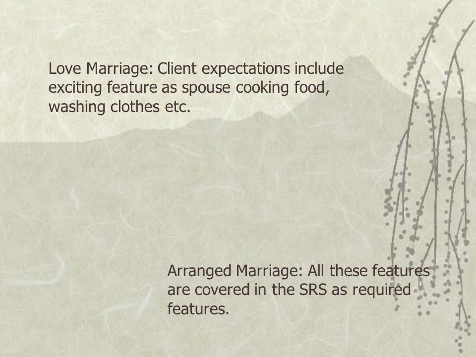 Love Marriage: Client expectations include exciting feature as spouse cooking food, washing clothes etc.