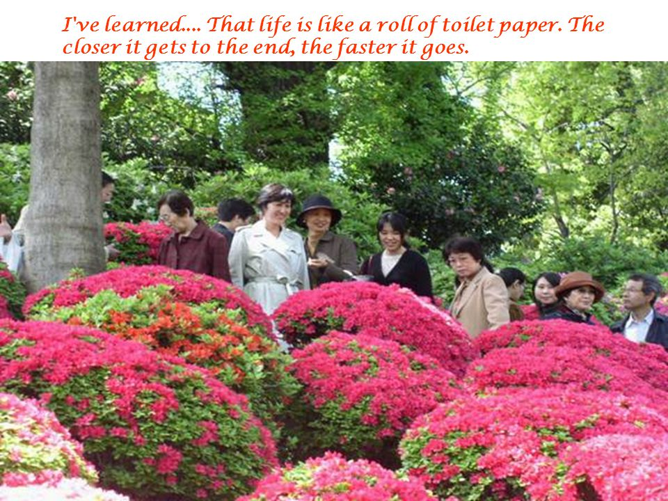 I ve learned. That life is like a roll of toilet paper