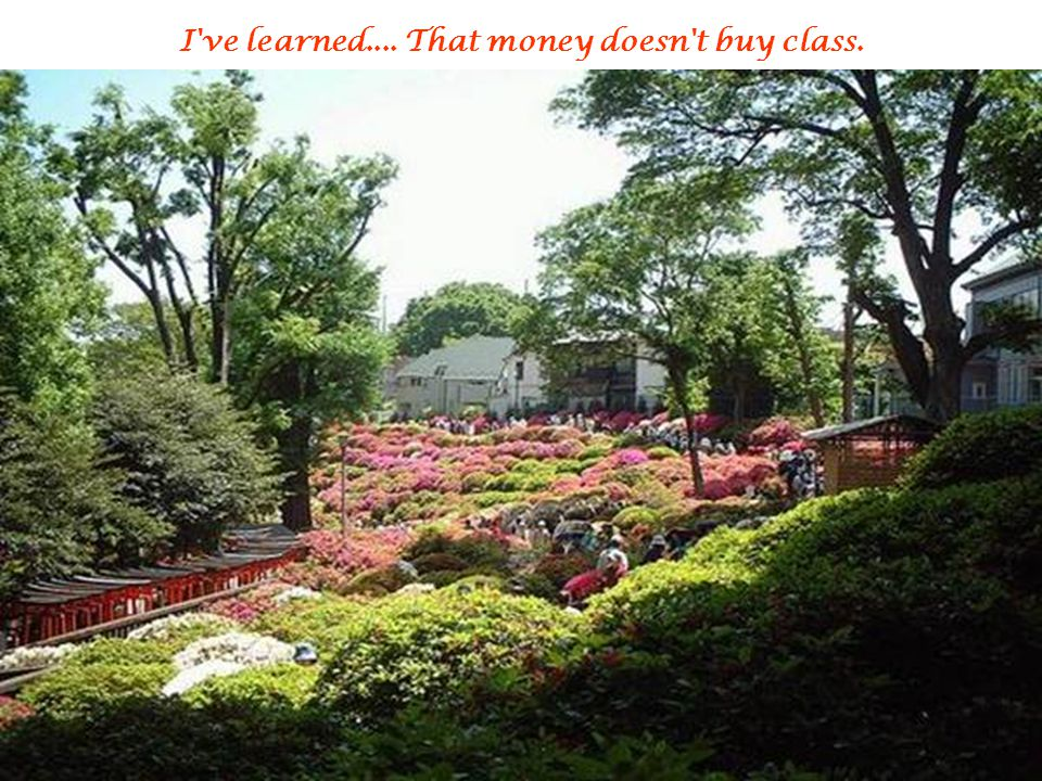 I ve learned.... That money doesn t buy class.