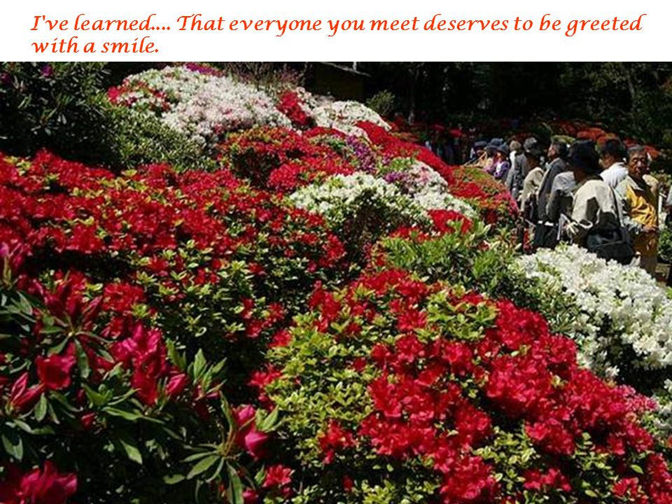 I ve learned.... That everyone you meet deserves to be greeted with a smile.