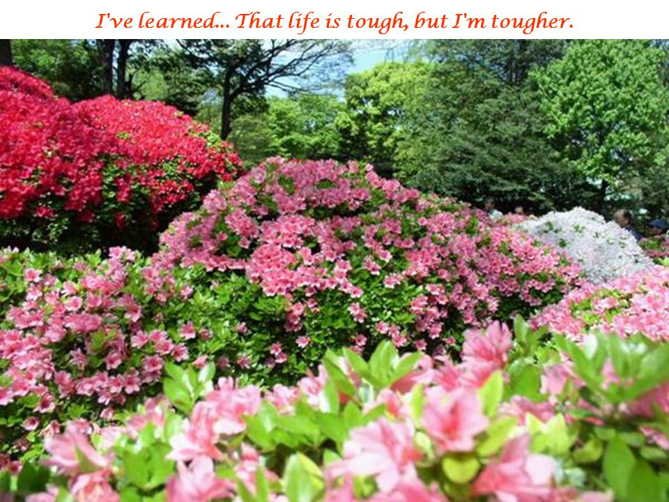 I ve learned... That life is tough, but I m tougher.