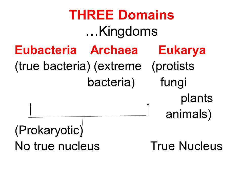 THREE Domains …Kingdoms