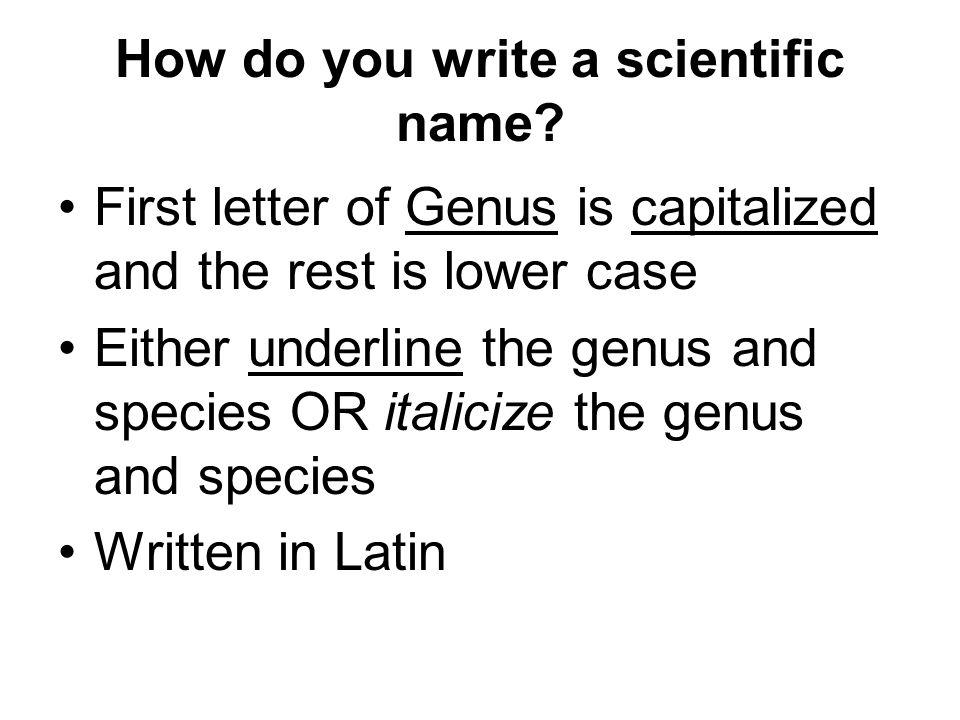 How do you write a scientific name