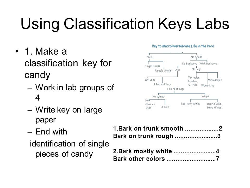 Using Classification Keys Labs