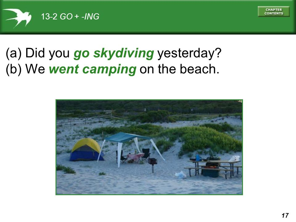 (a) Did you go skydiving yesterday (b) We went camping on the beach.