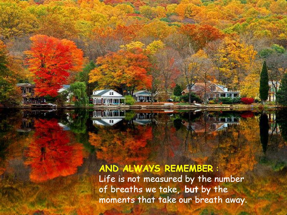 AND ALWAYS REMEMBER : Life is not measured by the number of breaths we take, but by the moments that take our breath away.