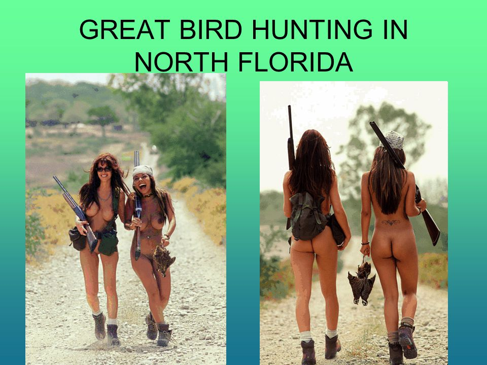 GREAT BIRD HUNTING IN NORTH FLORIDA