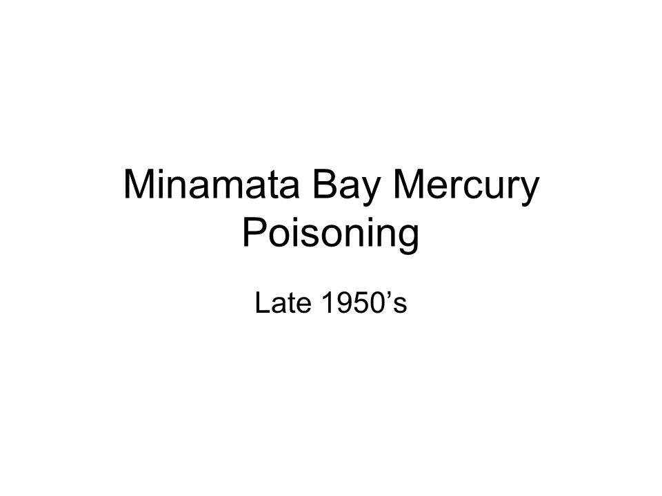 Minamata Bay Mercury Poisoning