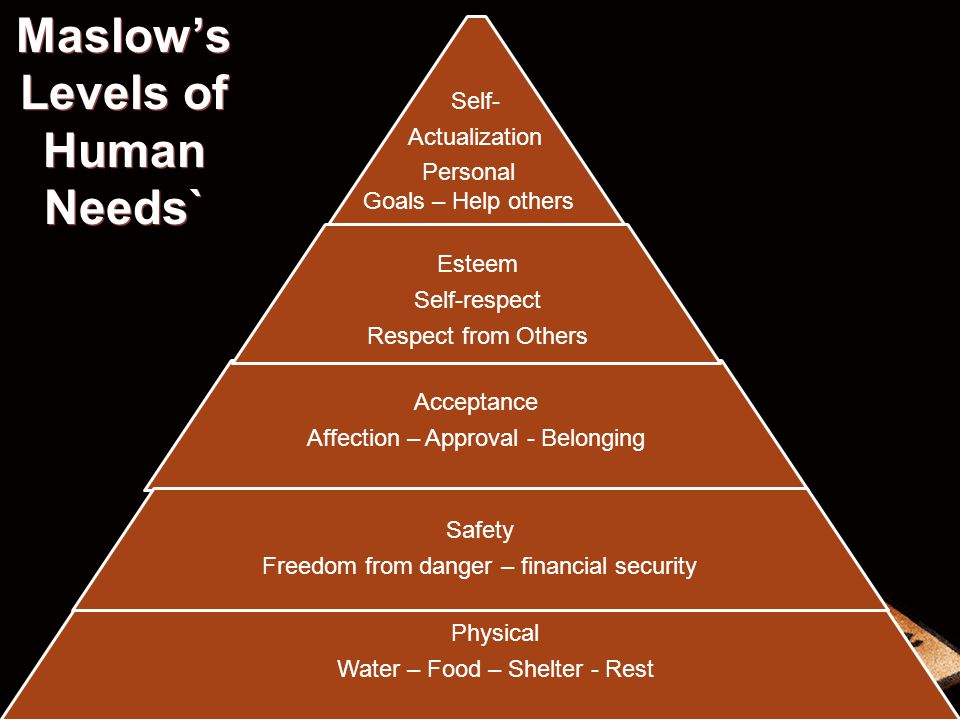 Maslow's Levels of Human Needs`
