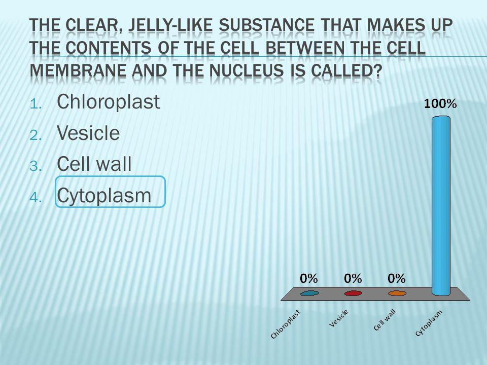Chloroplast Vesicle Cell wall Cytoplasm
