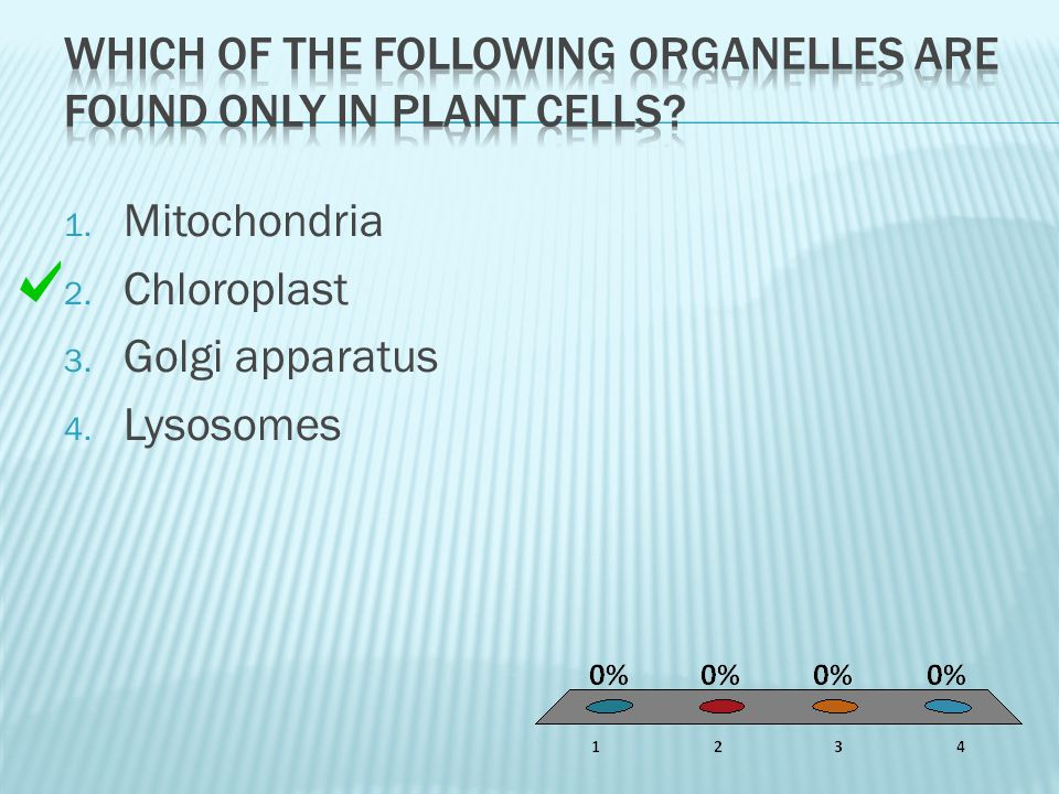Which of the following organelles are found only in plant cells