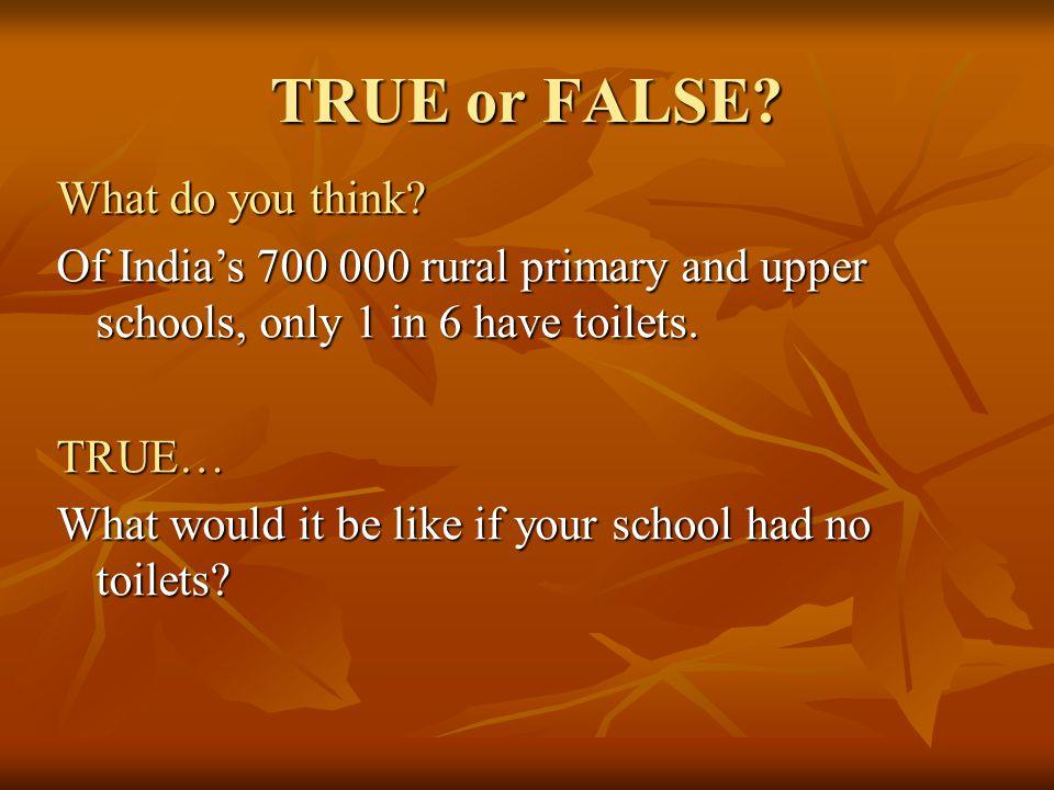 TRUE or FALSE What do you think