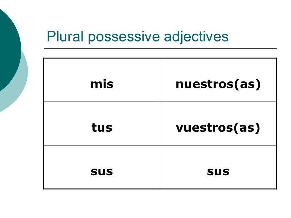Plural possessive adjectives
