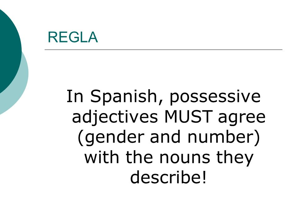 REGLA In Spanish, possessive adjectives MUST agree (gender and number) with the nouns they describe!