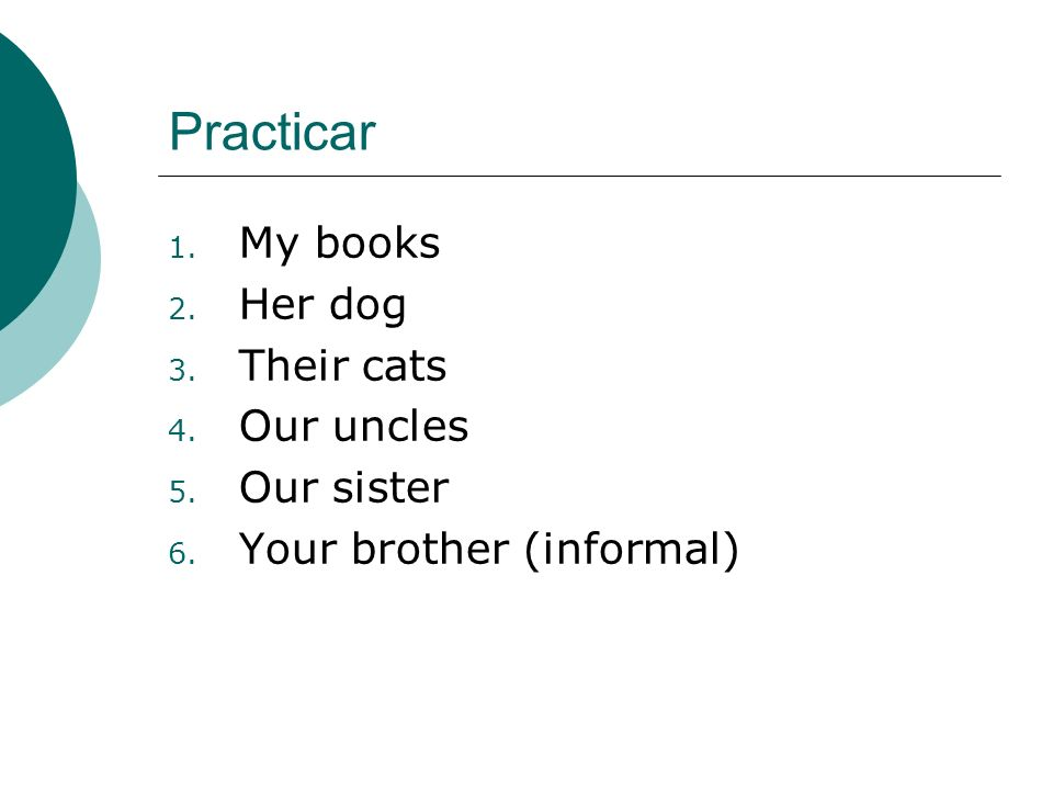 Practicar My books Her dog Their cats Our uncles Our sister