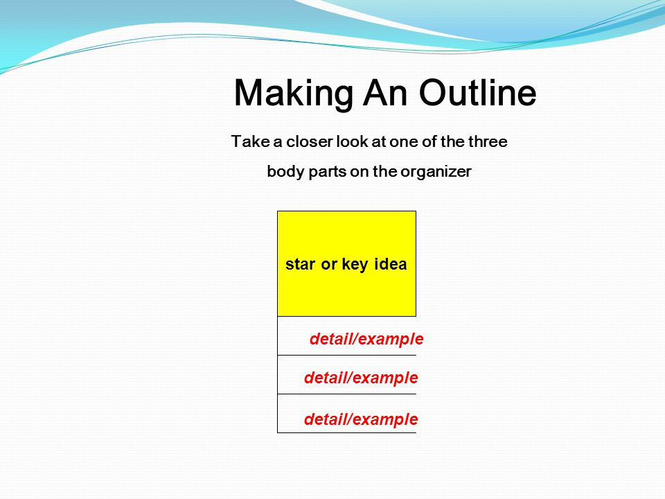 Take a closer look at one of the three body parts on the organizer